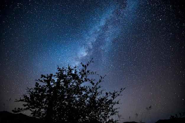 Voie lactée avec arbre et paysage nocturne étoile colorée et sur les montagnes Photo Premium