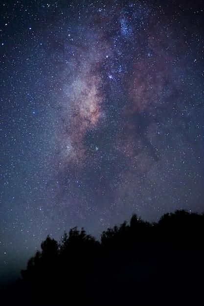 Voie lactée. paysage de nuit fantastique avec la voie lactée pourpre, ciel plein d'étoiles, étoiles brillantes. Photo Premium