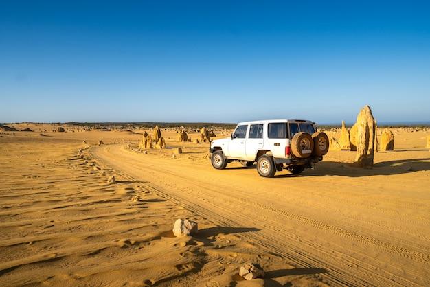 Voiture à quatre roues motrices sur pinnacles drive, chemin de terre dans le désert de pinnacles, parc national de nambung, australie occidentale., australie. Photo Premium