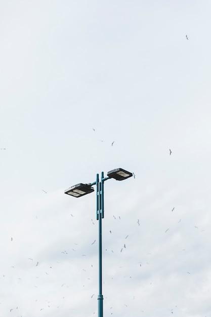 Volée d'oiseaux survolant le réverbère dans le ciel Photo gratuit