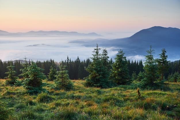 Voyage, Trekking. Paysage D'été - Montagnes, Herbe Verte, Arbres Et Ciel Bleu. Photo gratuit