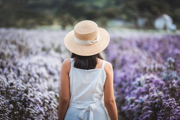 Voyageur Femme Asiatique Avec Robe Visites Sur Le Champ De Fleurs Margaret Aster Dans Le Jardin à Chiang Mai Thaïlande Photo Premium