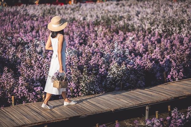Voyageur Femme Asiatique Visites Sur Le Champ De Fleurs Margaret Aster Dans Le Jardin à Chiang Mai Thaïlande Photo Premium