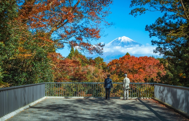 Voyageur à la recherche du mont fuji et d'une feuille d'automne colorée aux chutes shiraito à fujinomiya, shizuoka, japon. Photo Premium
