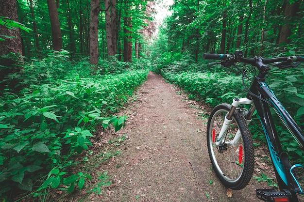 Vtt en bas de la colline descendant rapidement à vélo Photo Premium