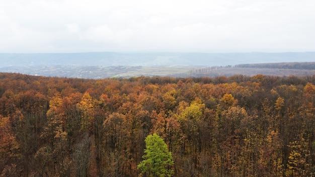 Vue Aérienne De Drone De La Nature En Moldavie, Forêt Jaunie, Collines, Ciel Nuageux Photo gratuit