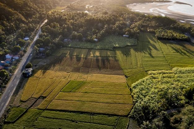 Vue Aérienne Du Champ Herbeux Près De La Route Et De La Mer Avec Des Arbres Pendant La Journée Photo gratuit