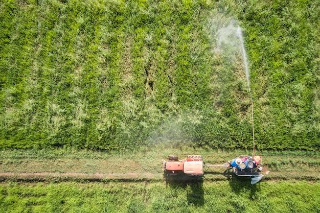 Vue aérienne du drone volant. un agriculteur thaïlandais pulvérise un produit chimique sur une jeune rizière verte Photo Premium