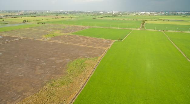 Vue aérienne du drone volant de rizière avec paysage Photo Premium