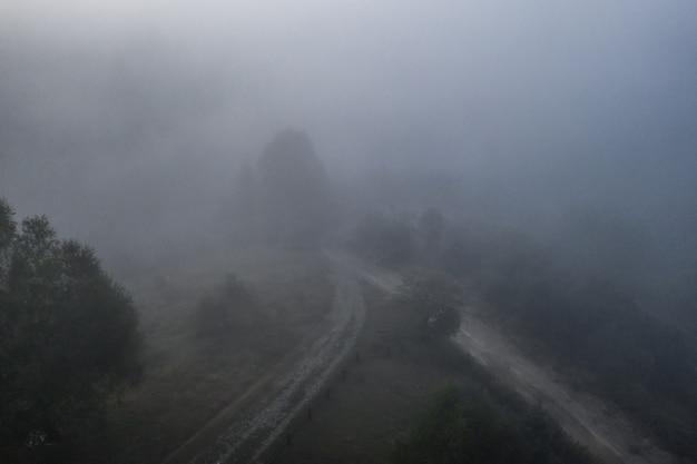 Vue Aérienne De La Forêt Mixte Colorée Enveloppée Dans Le Brouillard Du Matin Sur Une Belle Journée D'automne Photo gratuit