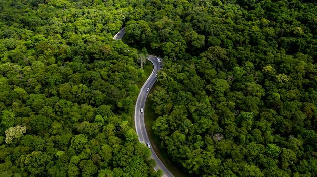 Vue aérienne sur la forêt tropicale avec une route traversant avec voiture, route forestière. Photo Premium