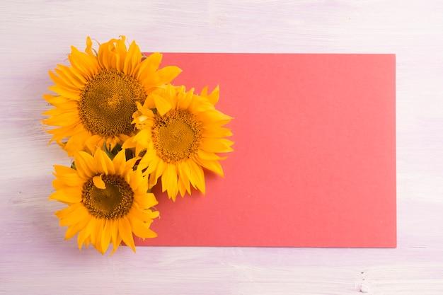 Vue aérienne, de, jaune, tournesols, sur, papier rouge, blanc, sur, les, arrière-plan texturé Photo gratuit