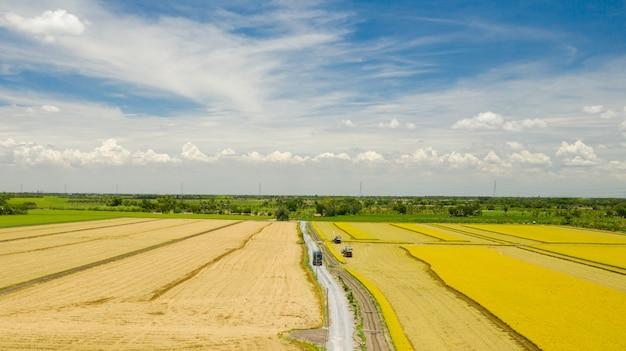 Vue aérienne de la machine harvester travaillant dans la rizière d'en haut Photo Premium