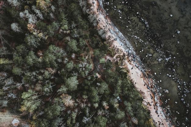 Vue Aérienne D'un Paysage Avec Beaucoup D'arbres Et De Voitures Sur Une Route Photo gratuit
