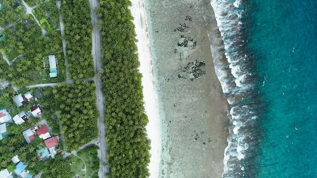 Vue Aérienne De La Plage Avec Les Vagues De La Mer Et La Jungle Des Maldives Photo gratuit