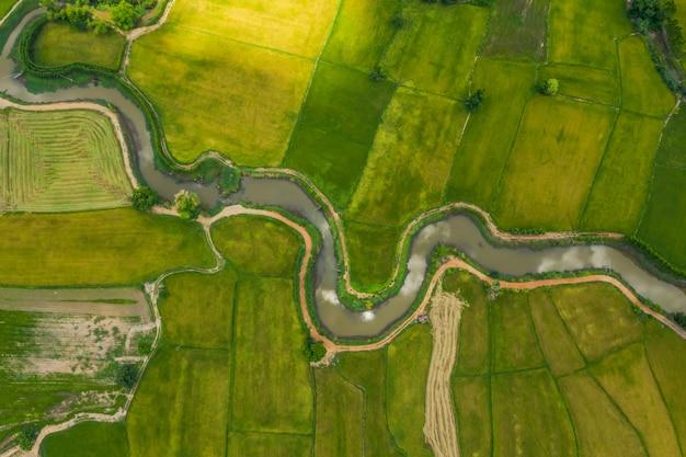 Vue aérienne de la rivière tortueuse dans un champs Photo Premium