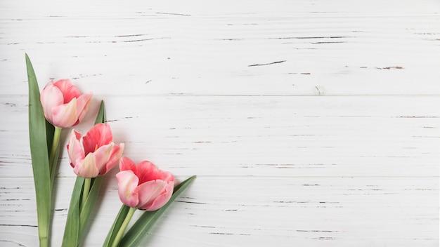 Vue aérienne, de, rose, tulipes, sur, blanc, texture fond bois Photo gratuit