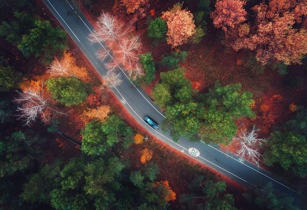 Vue Aérienne, De, Route, à, Voiture Floue, Dans, Forêt Automne Photo Premium