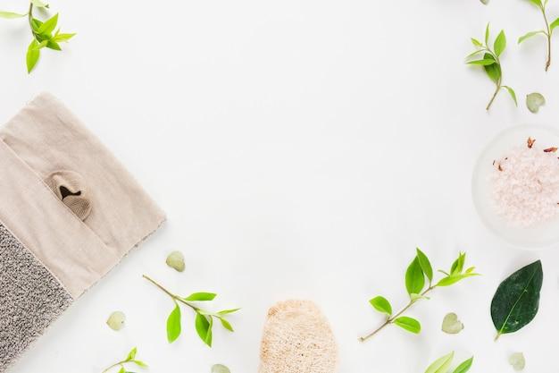 Une vue aérienne de sel et de loofah vert feuilles étalées sur fond blanc Photo gratuit
