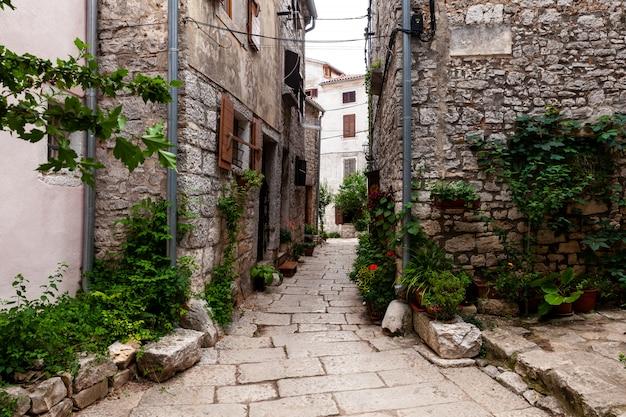 Vue de l'allée typique d'istrie à villa, bale, croatie Photo Premium