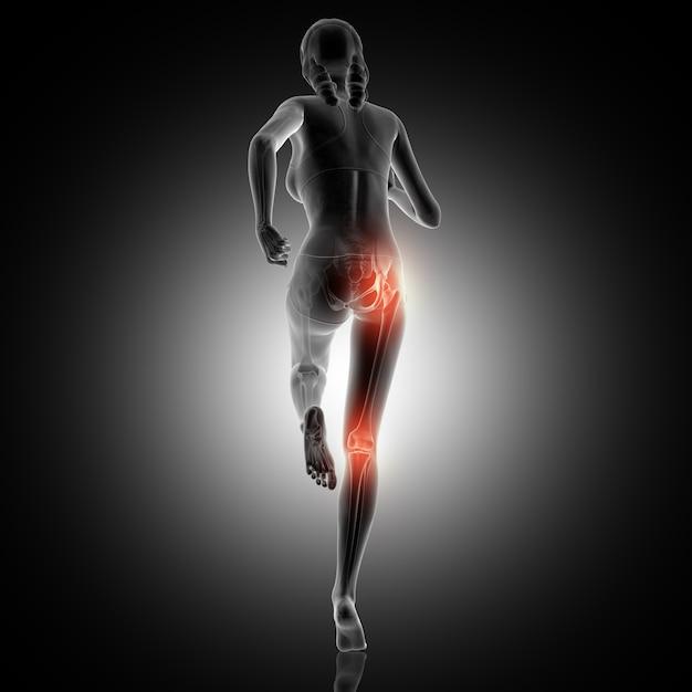 Vue arrière 3d d'une femme qui court avec l'articulation du genou et de la hanche en surbrillance Photo gratuit
