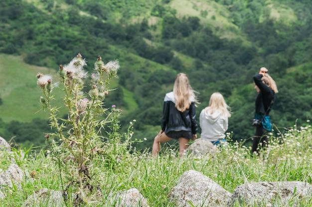 Vue arrière des amies assis ensemble face à la montagne verte Photo gratuit