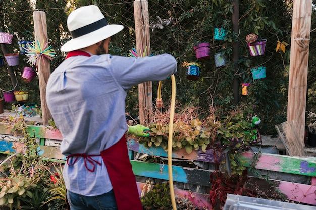 Vue arrière d'un homme portant un chapeau arrosant les plantes avec un tuyau dans le jardin Photo gratuit