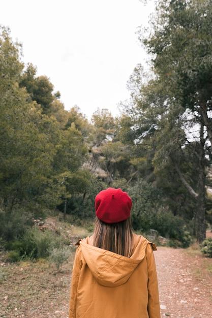 Vue Arrière, De, A, Jeune Femme, Dans, Rouge, Bonnet Tricot, Debout, Sur, Les, Chemin, à, Forêt Photo gratuit