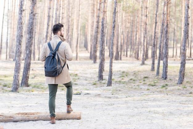 Vue arrière d'un randonneur avec son sac à dos, debout dans les bois Photo gratuit