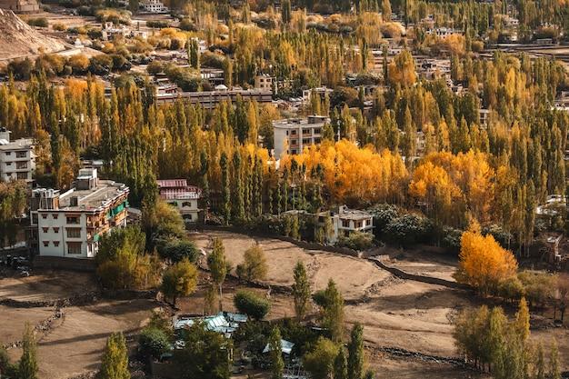 Vue d'automne du paysage dans le district de leh ladakh, partie nord de l'inde Photo Premium