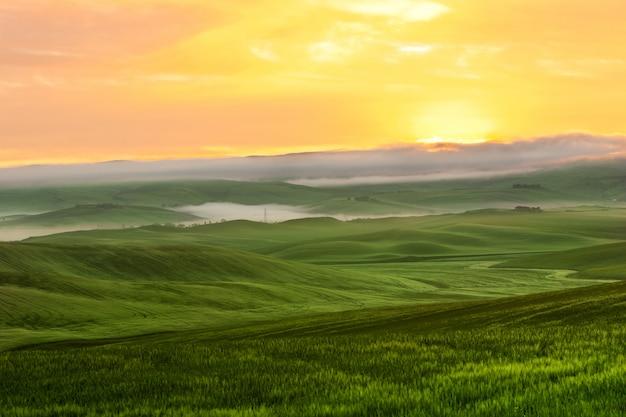 Vue de brouillard du matin sur les terres agricoles en toscane, italie Photo Premium