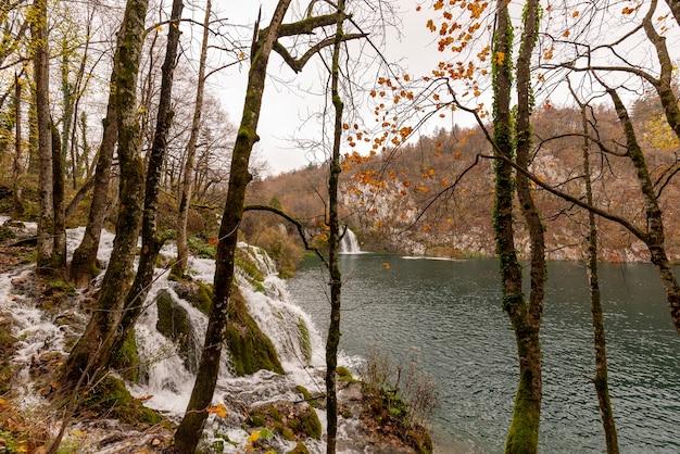 Vue Des Chutes D'eau Dans Le Parc National Des Lacs De Plitvice En Croatie Photo gratuit