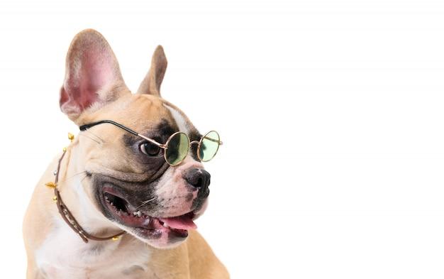Vue de côté du mignon bouledogue français porter des lunettes Photo Premium