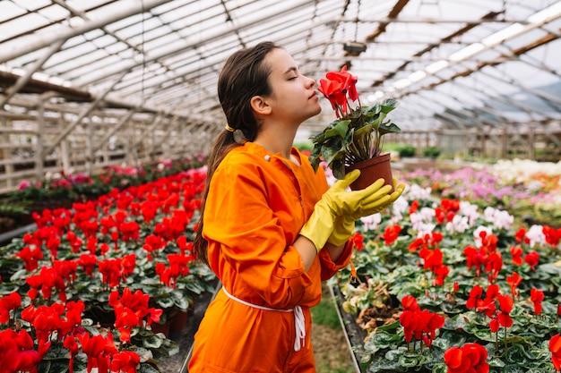 Vue de côté d'une jardinière femelle sentant une fleur rouge Photo gratuit