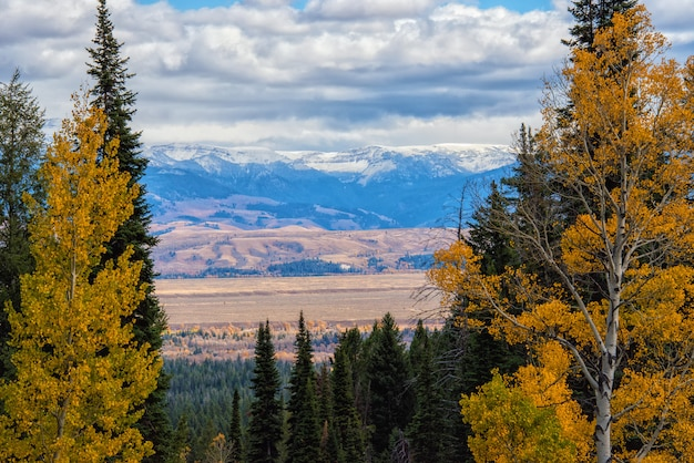 Vue Depuis Le Death Canyon Trail Sur Jackson Hole Valley Photo Premium
