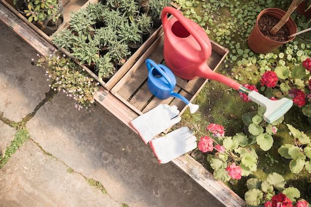 Vue de dessus d'arrosoir et de gants à la main près de plantes en pot de fleurs poussant dans une serre Photo gratuit