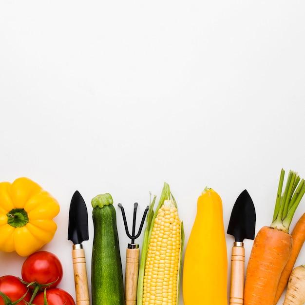 Vue De Dessus Assortiment De Différents Légumes Et Outils De Jardinage Photo gratuit