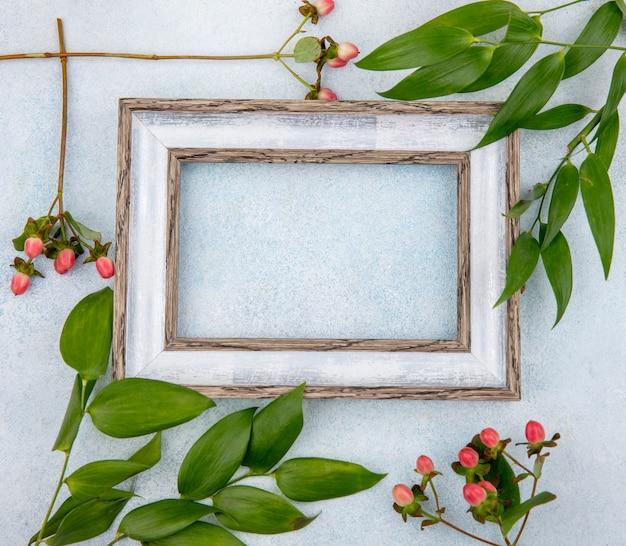 Vue De Dessus Des Baies D'hypericum Rose Avec Des Feuilles Isolées Sur Une Surface Blanche Photo gratuit