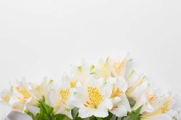 Vue De Dessus Bouquet D'alstroemeria Avec Copie-espace Photo Premium
