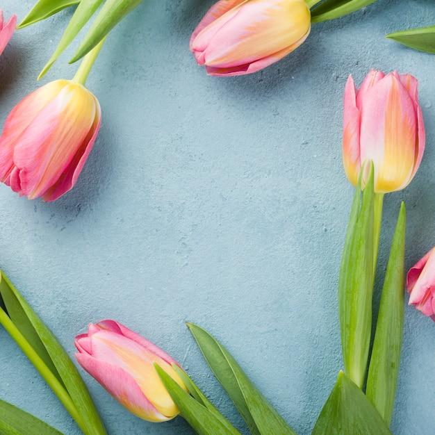 Vue De Dessus Cadre De Tulipes Sur Table Photo gratuit
