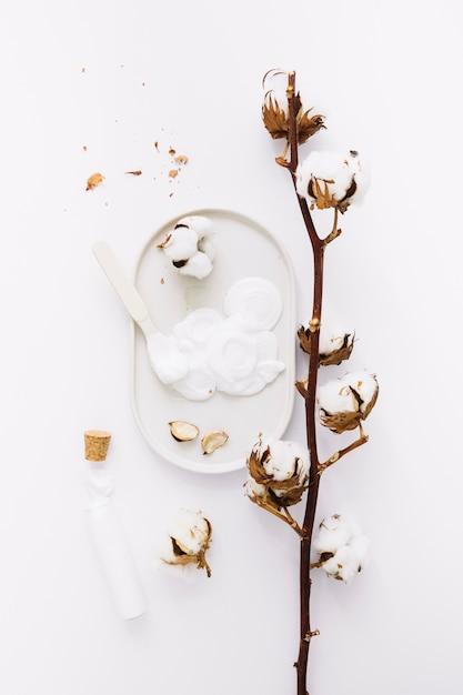 Vue de dessus de la crème hydratante et d'une brindille de coton sur fond blanc Photo gratuit