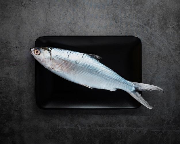 Vue de dessus de délicieux poissons sur fond de stuc Photo gratuit