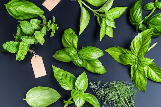 Vue de dessus différentes herbes aromatiques Photo gratuit
