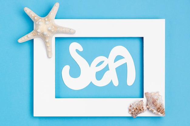 Vue De Dessus Du Cadre Avec Des Coquillages Et Des étoiles De Mer Photo gratuit