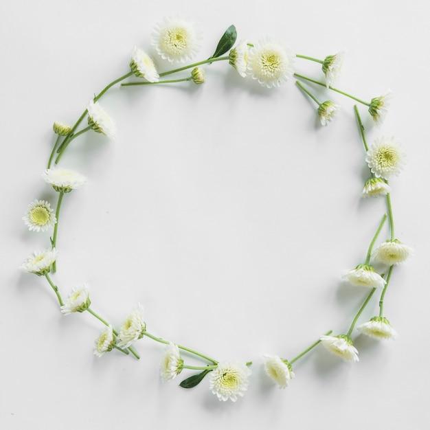 Vue de dessus du cadre floral Photo gratuit