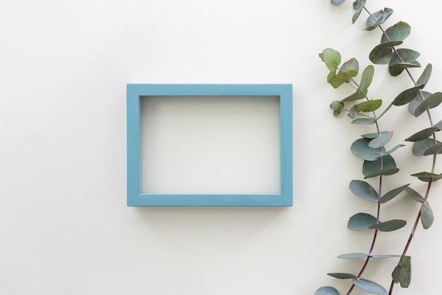 Vue de dessus du cadre de photo de bordure bleue et de la branche d'eucalyptus populus Photo gratuit
