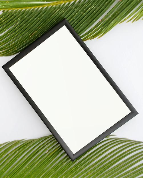 Vue de dessus du cadre vide et des feuilles de palmier sur une surface blanche Photo gratuit