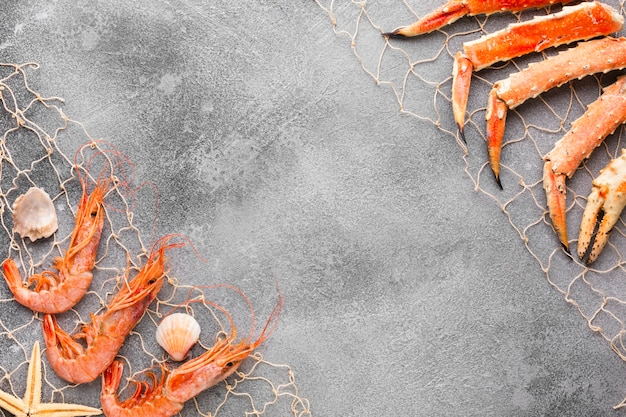 Vue de dessus du homard et des crevettes pêchés dans une résille Photo gratuit
