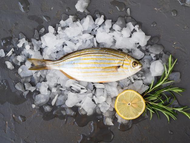 Vue de dessus du poisson frais sur des glaçons Photo gratuit