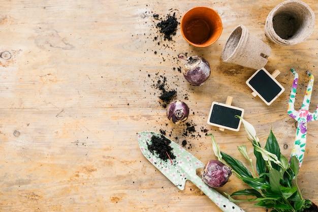 Vue de dessus du pot de fleurs; fourche de pitch; pelle; bulbe d'oignon; sol; et ardoise vierge; feuilles sur une surface en bois Photo gratuit